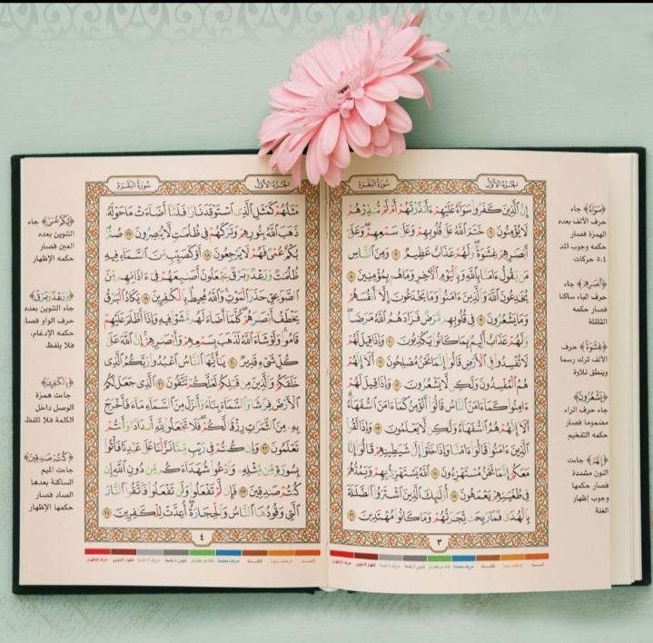 Merenungi Ayat Al-Qur'an Untuk Menjadi Penenang Hati